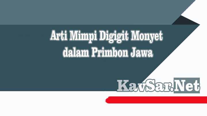 Arti Mimpi Digigit Monyet dalam Primbon Jawa