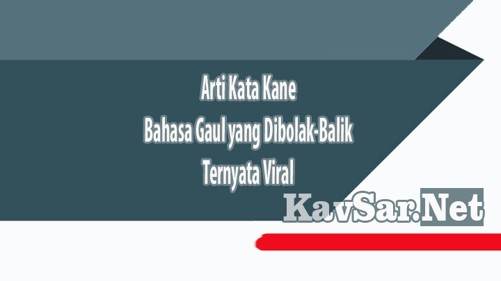 Arti Kata Kane Bahasa Gaul yang Dibolak-Balik Ternyata Viral